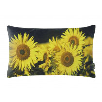 Proflax Kissenhülle Sonnenblumen 40x60 cm Schwarz Gelb